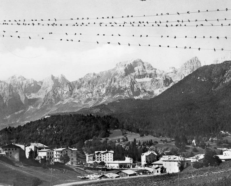 Vista di Andalo - Trentino